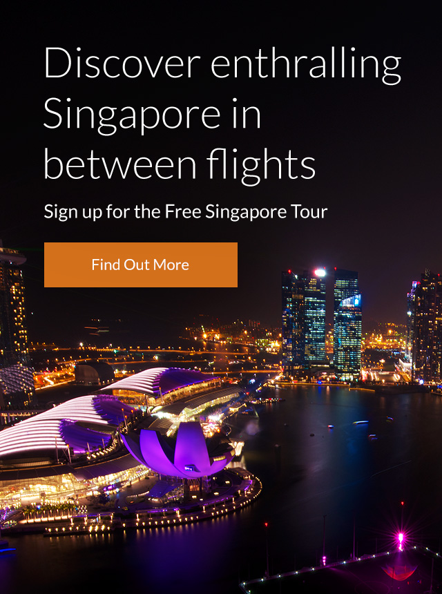 Discover enthralling Singapore with the Free Singapore Tour