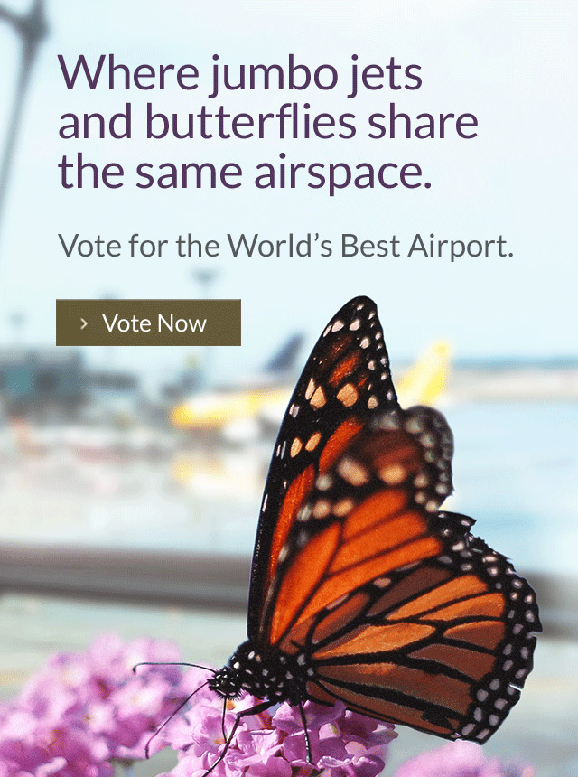 Vote for the World's Best Airport.