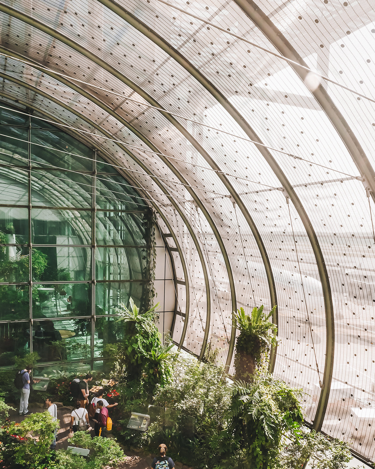What: Butterfly Garden<br>Where: Terminal 3 Departure Transit Hall, Level 2 & 3