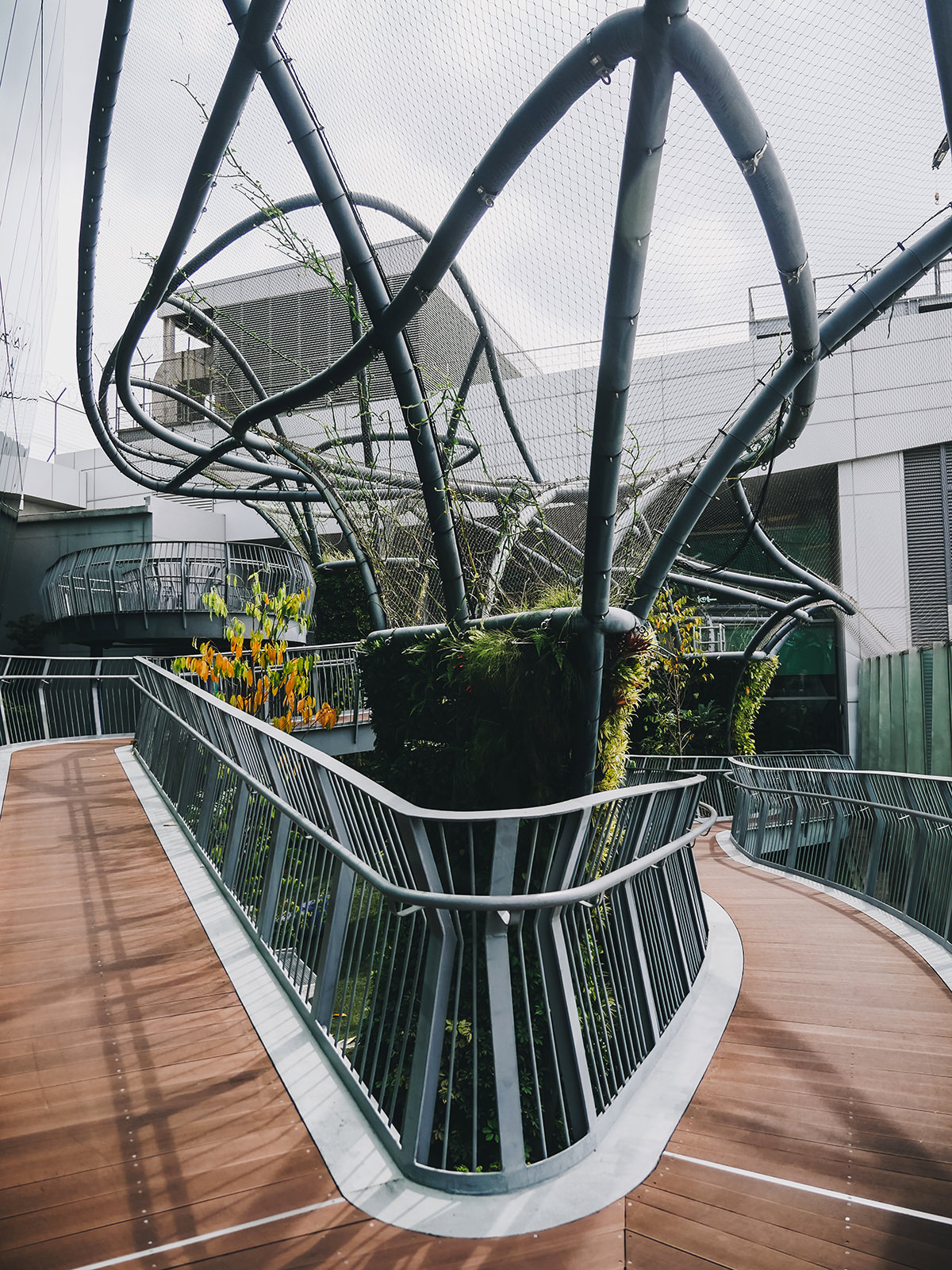 What: Sculptural Tree Garden<br>Where: Terminal 1 Departure Transit Hall, Level 2